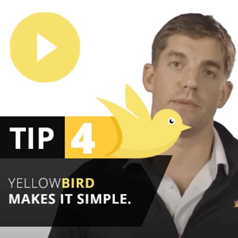 Yellow Bird Tip 4