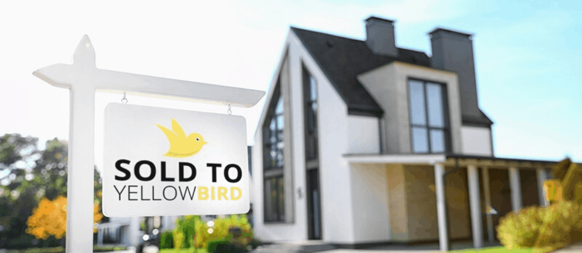 Yellow Bird Banner